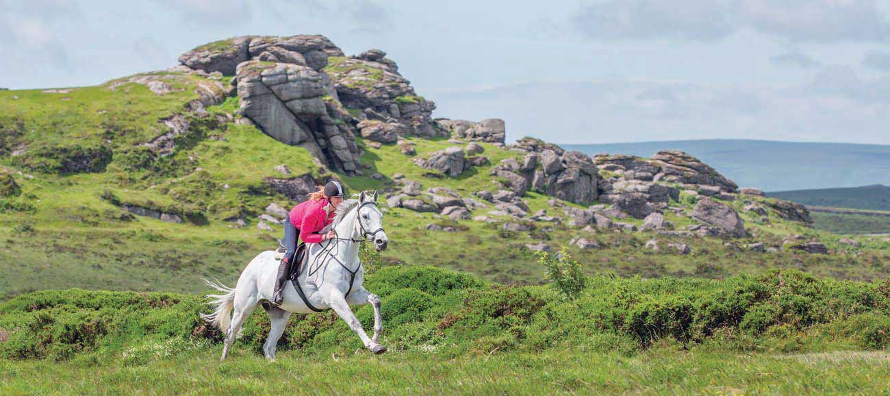 Horse Riding On Dartmoor Horse Stables Riding Schools And Tours