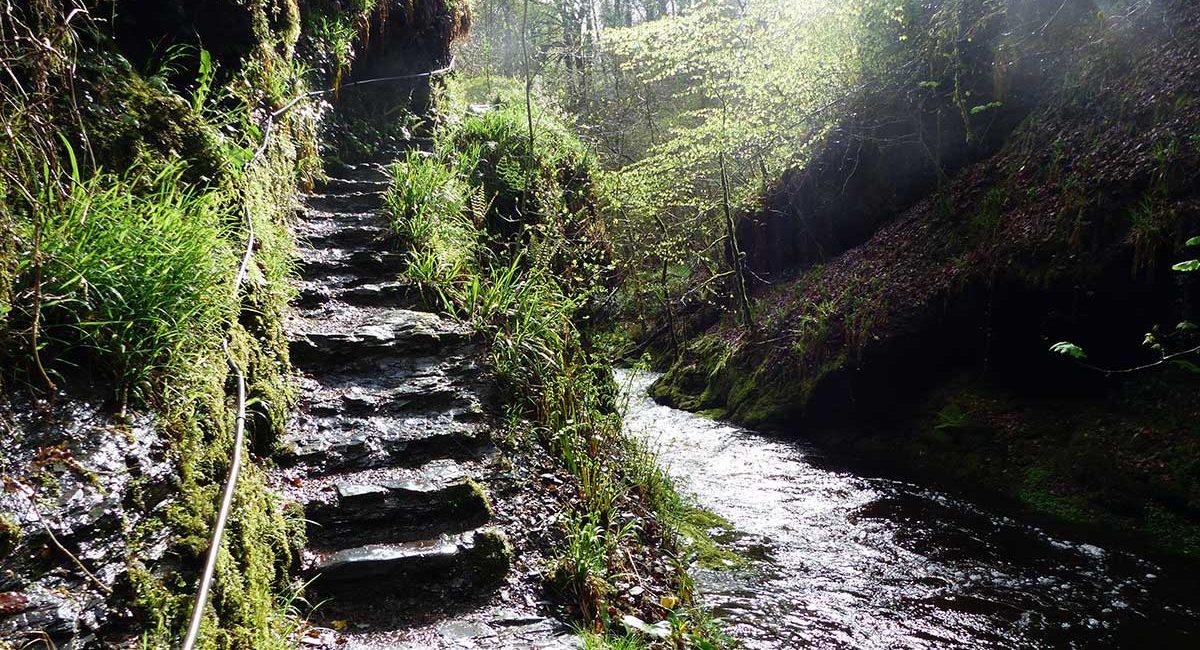 Lydford-gorge2